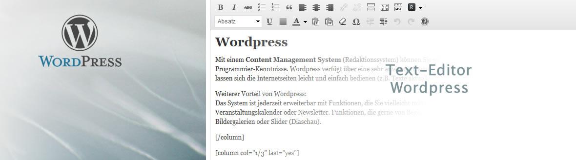 Moderne Webentwicklung mit WordPress
